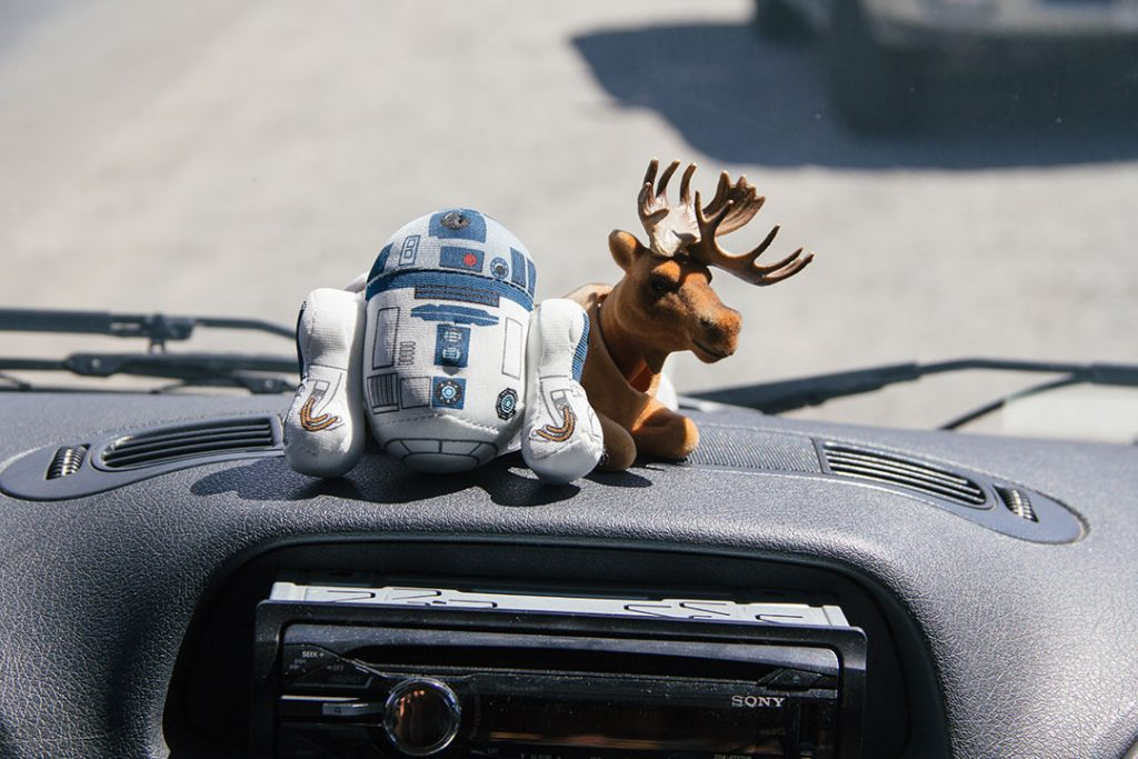 "Our co-pilots: R2 offers moral support. Herman always our ""should we go?"" questions with a resounding yes (he was built that way, though)."